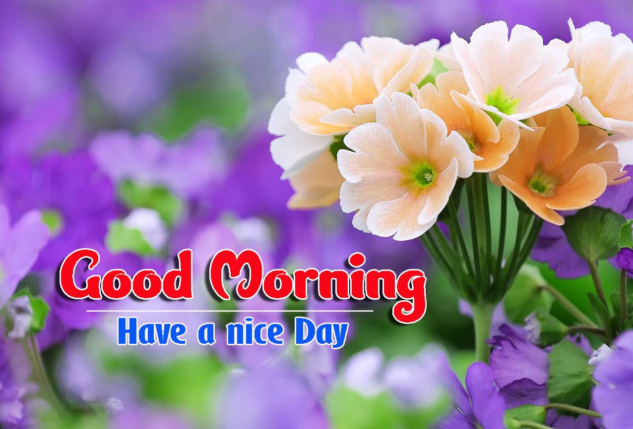 Good Morning Images HD 28