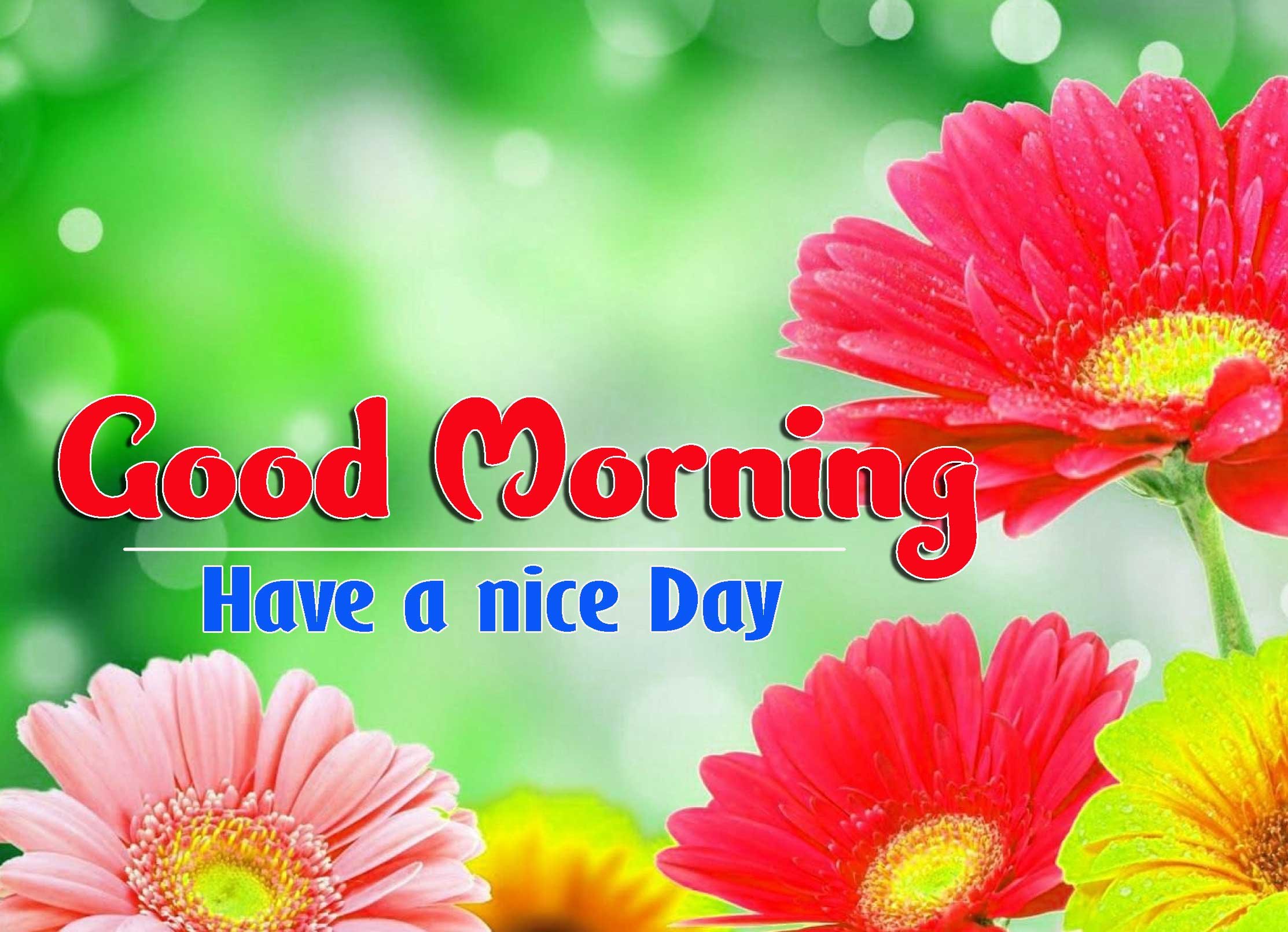 Good Morning Images HD 31