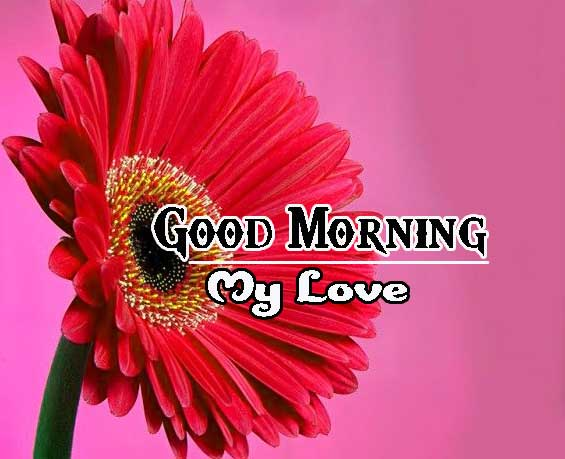 Good Morning Images HD 4