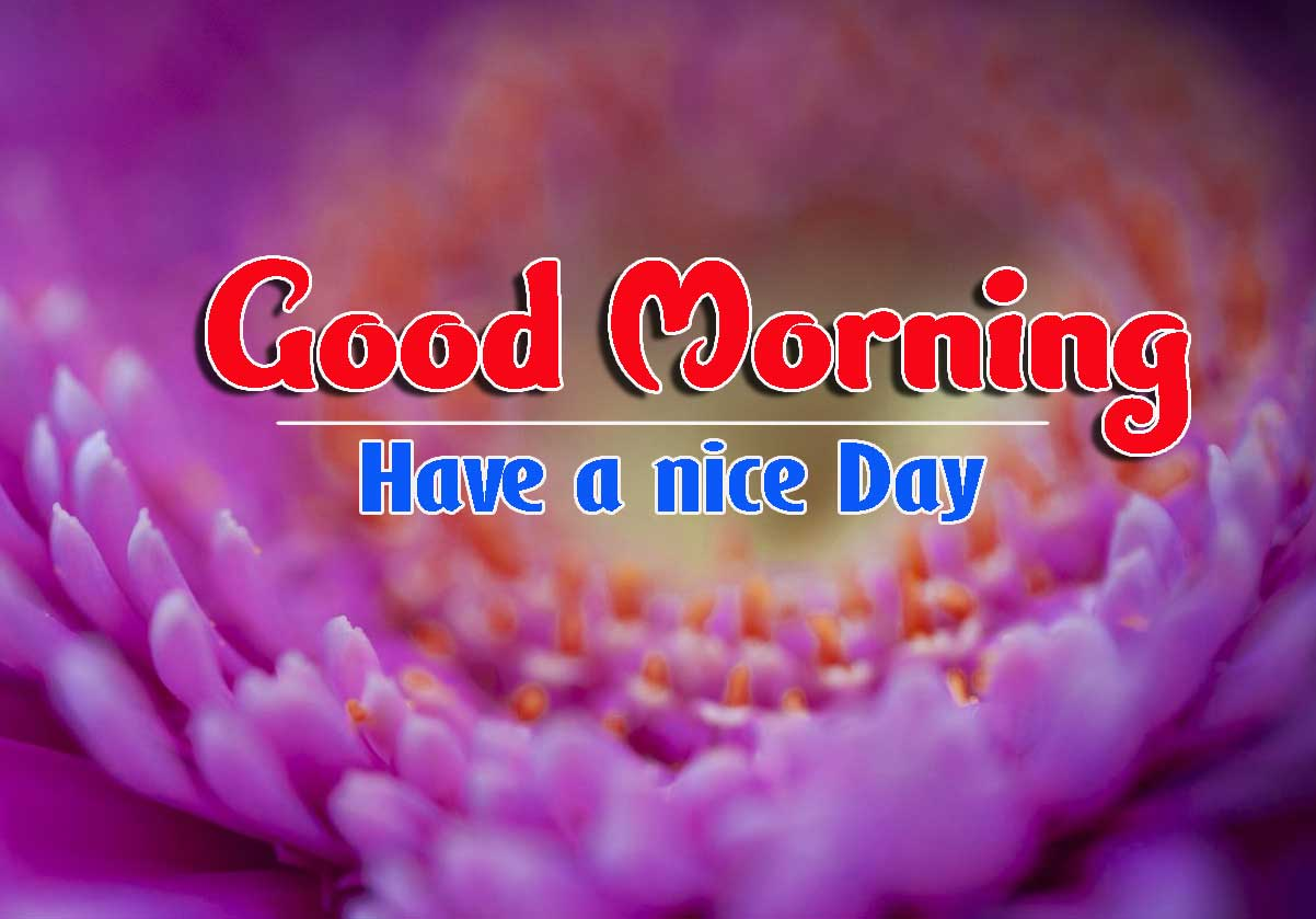 Good Morning Images HD 41