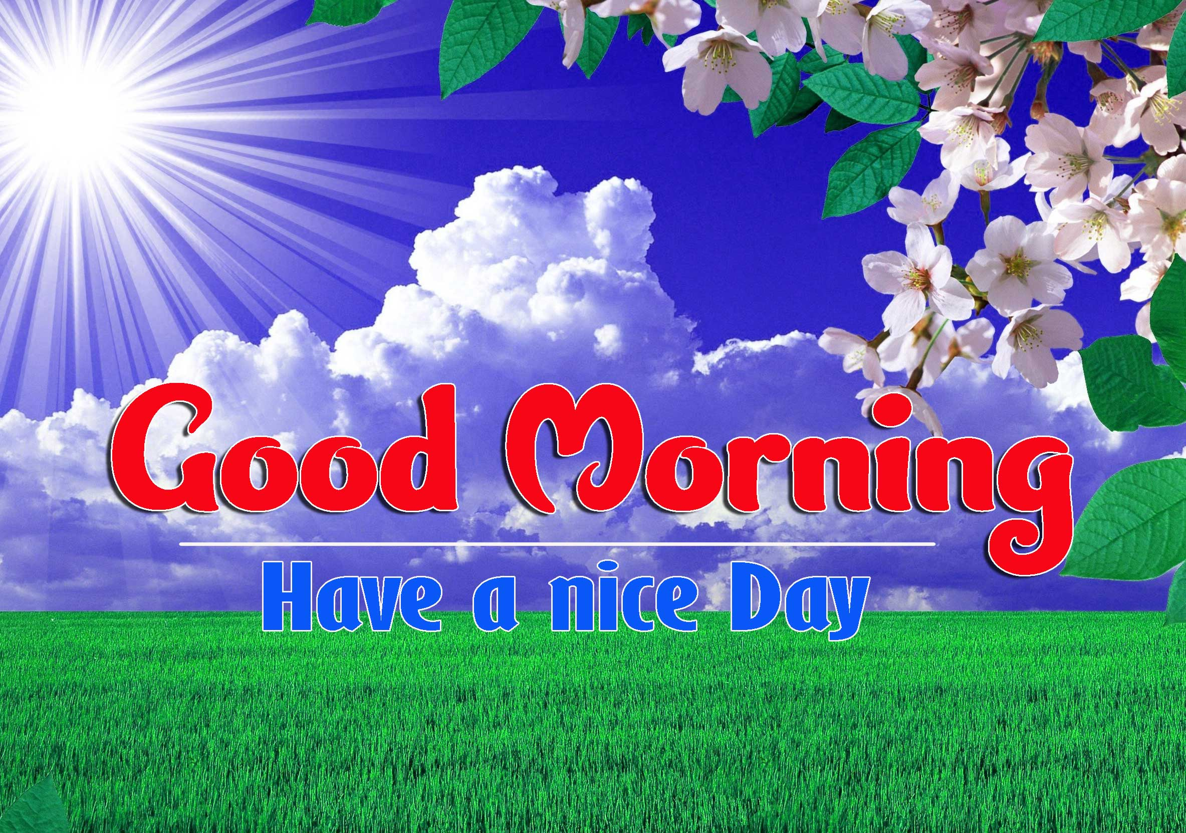 Good Morning Images HD 48