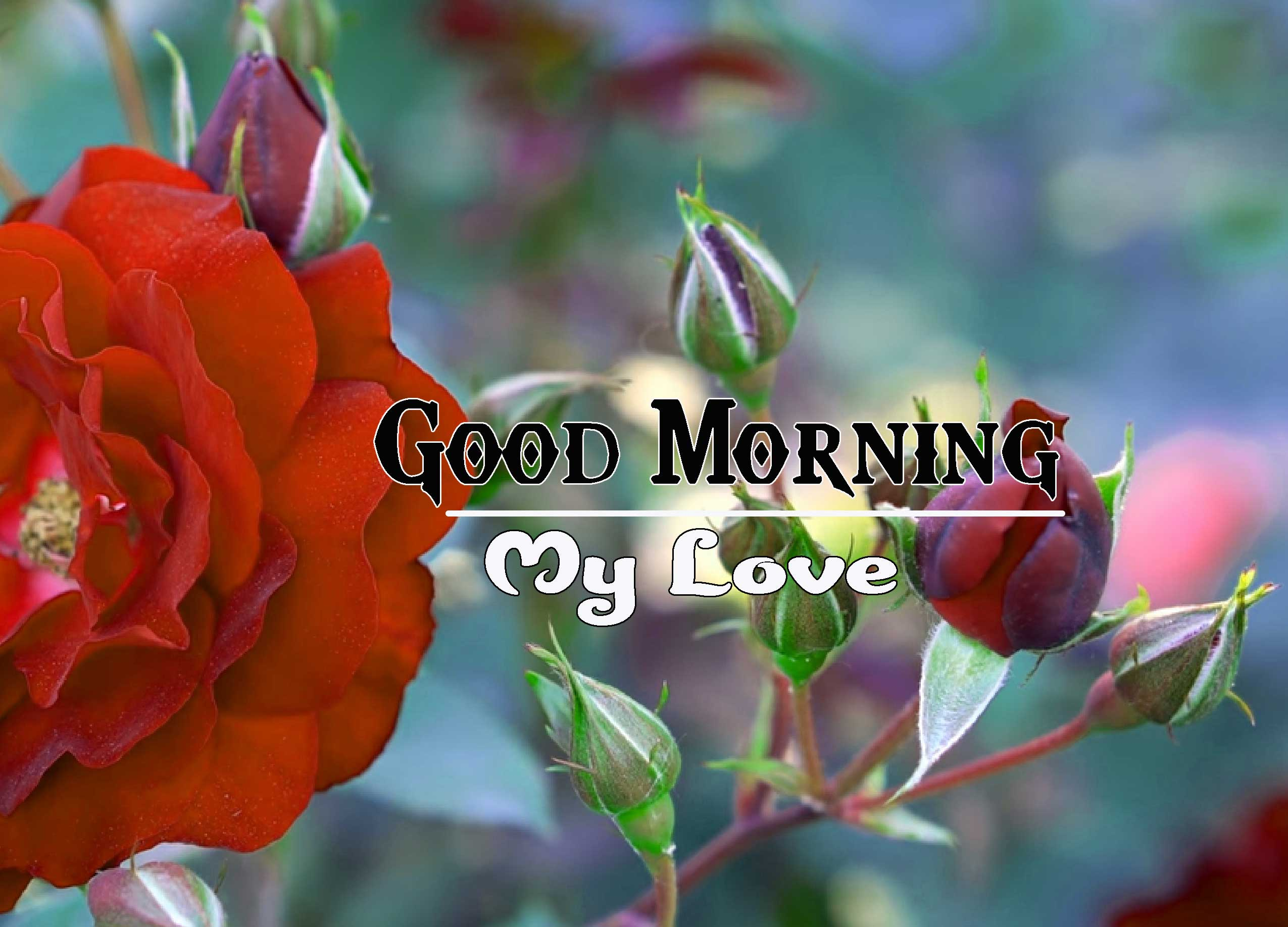 Good Morning Images HD 50