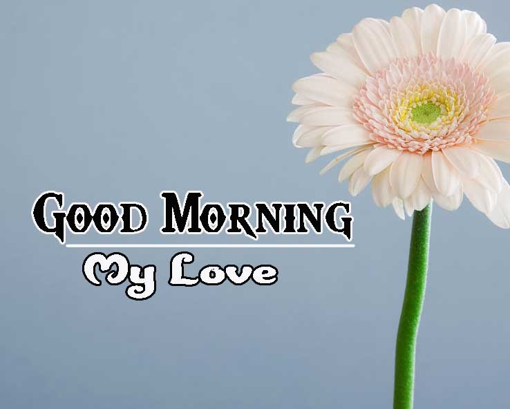 Good Morning Images HD 52
