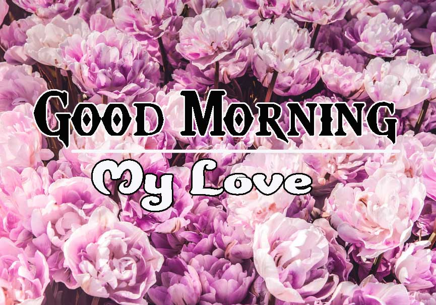 Good Morning Images HD 53
