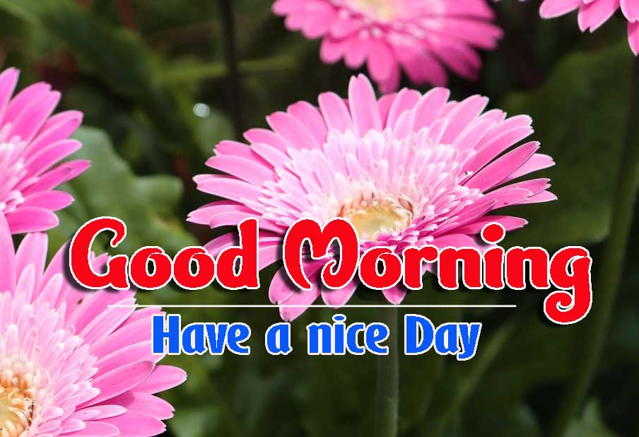 Good Morning Images HD 55