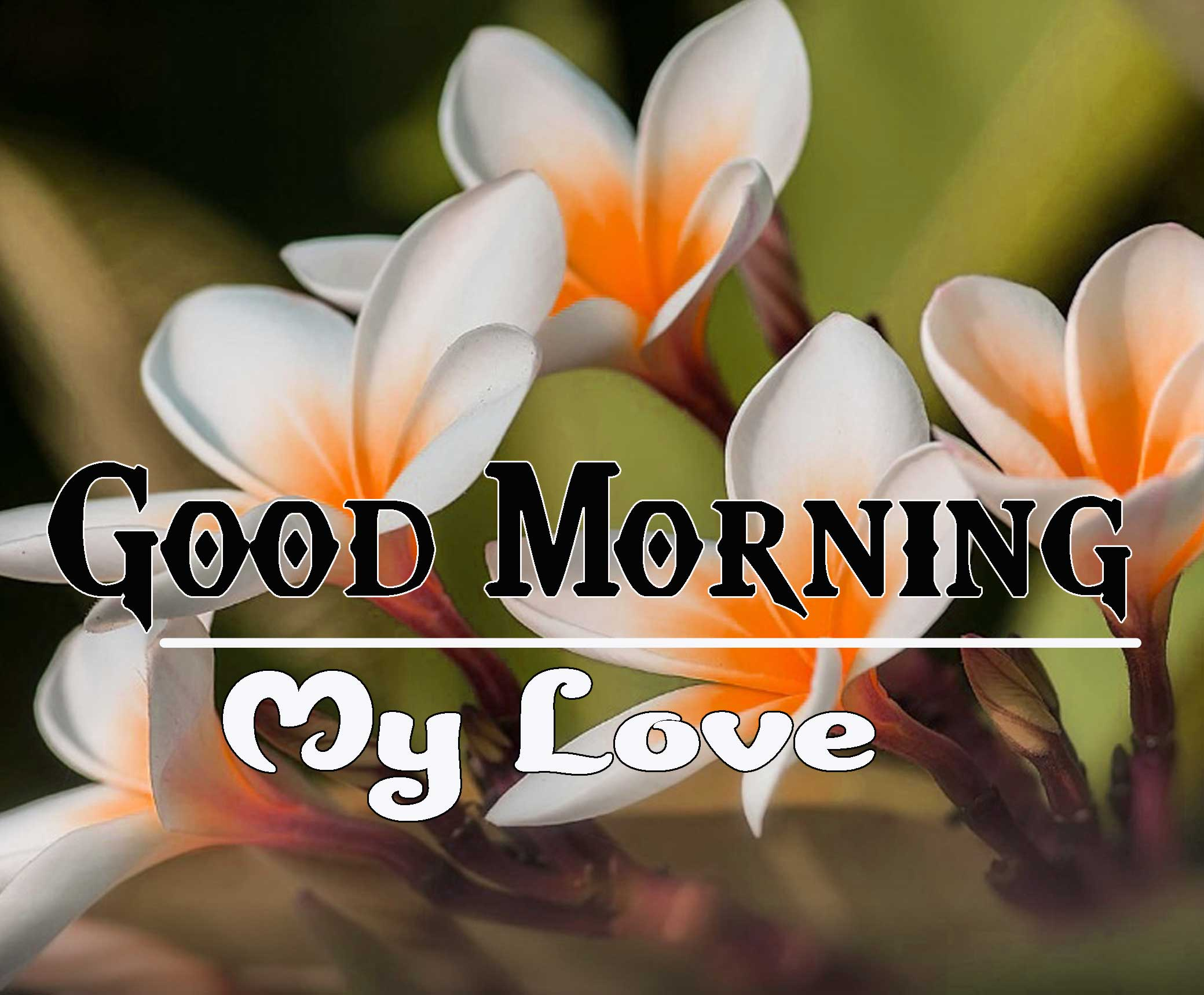 Good Morning Images HD 56
