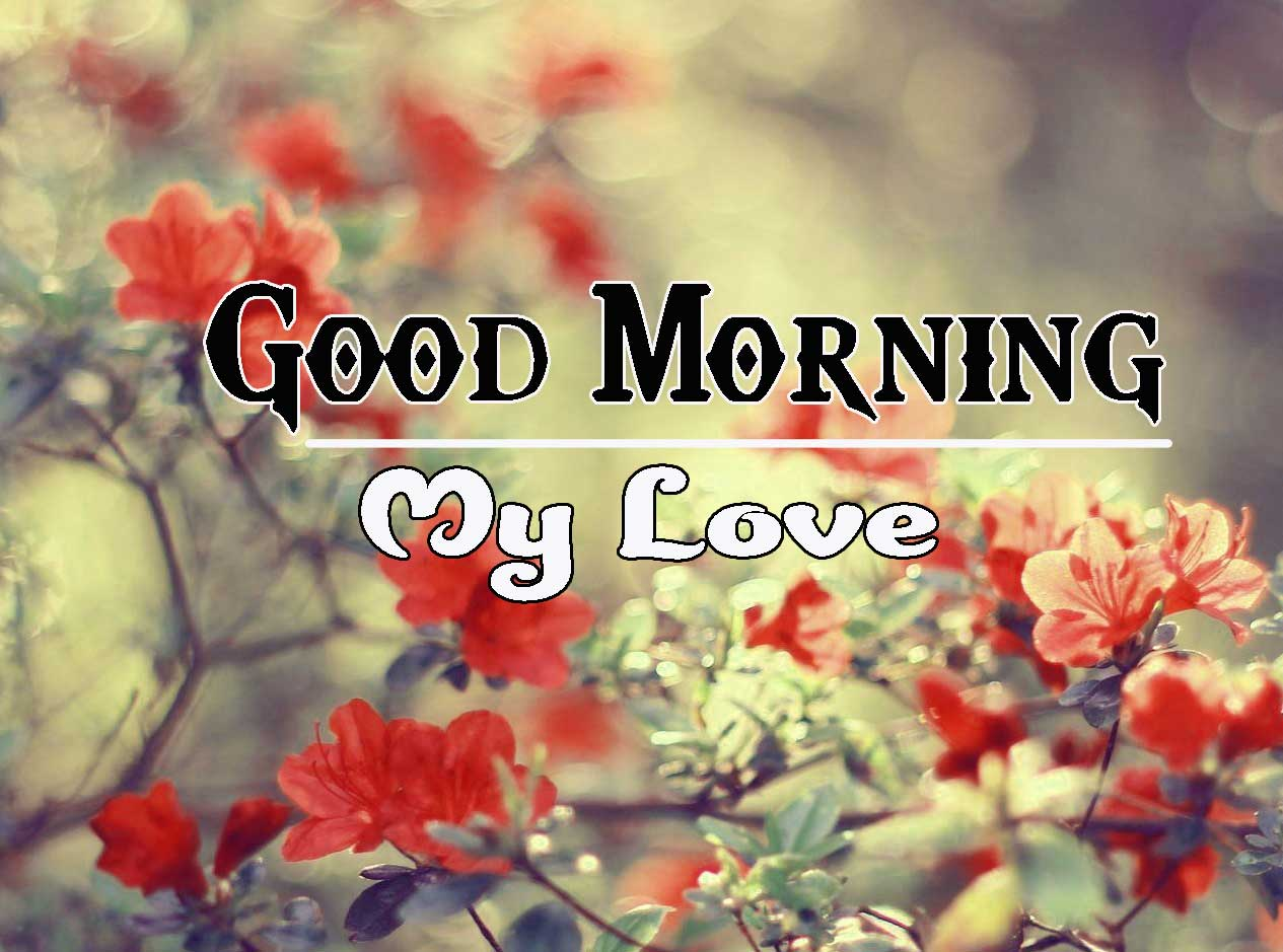 Good Morning Images HD 60