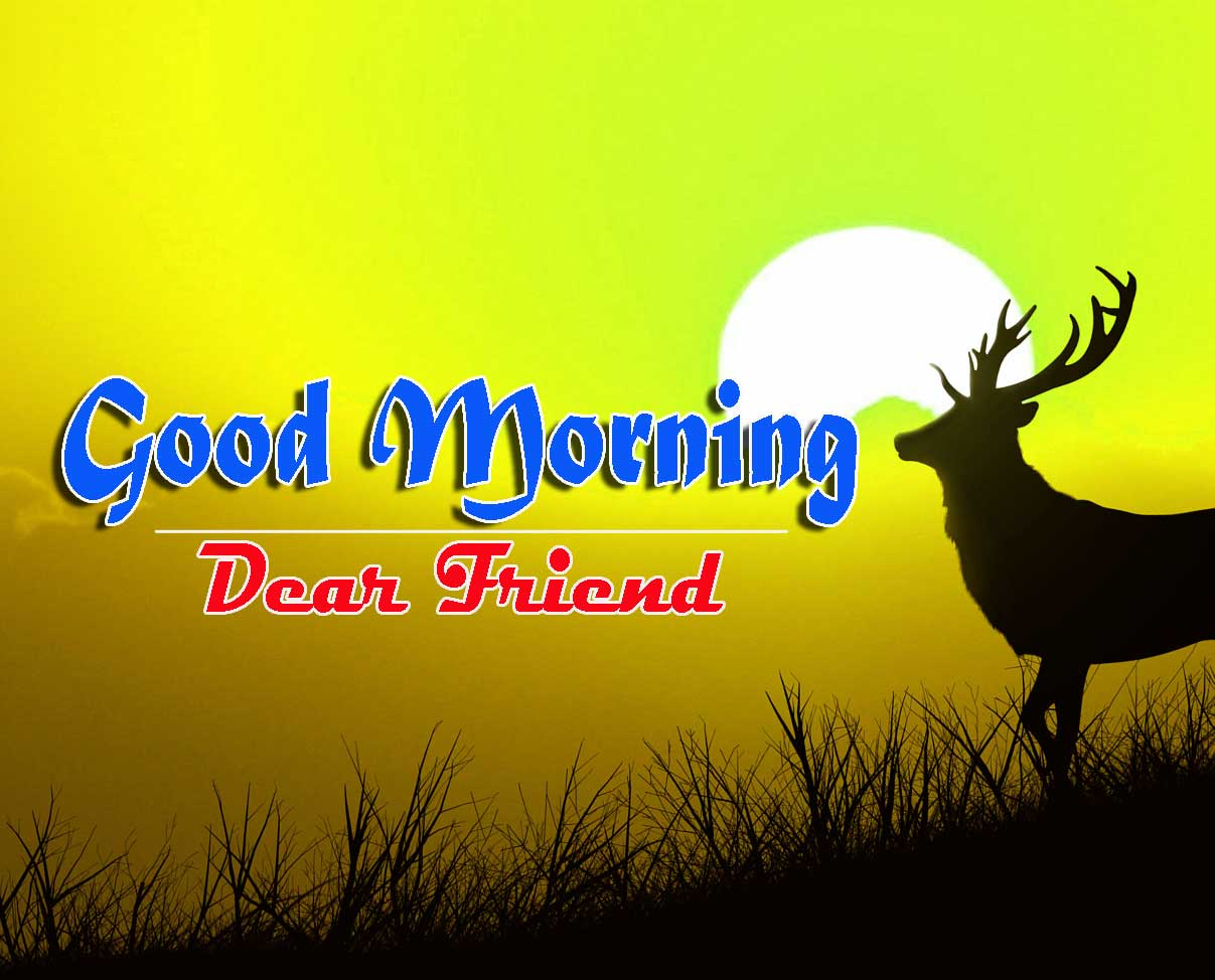 Good Morning Images HD 62