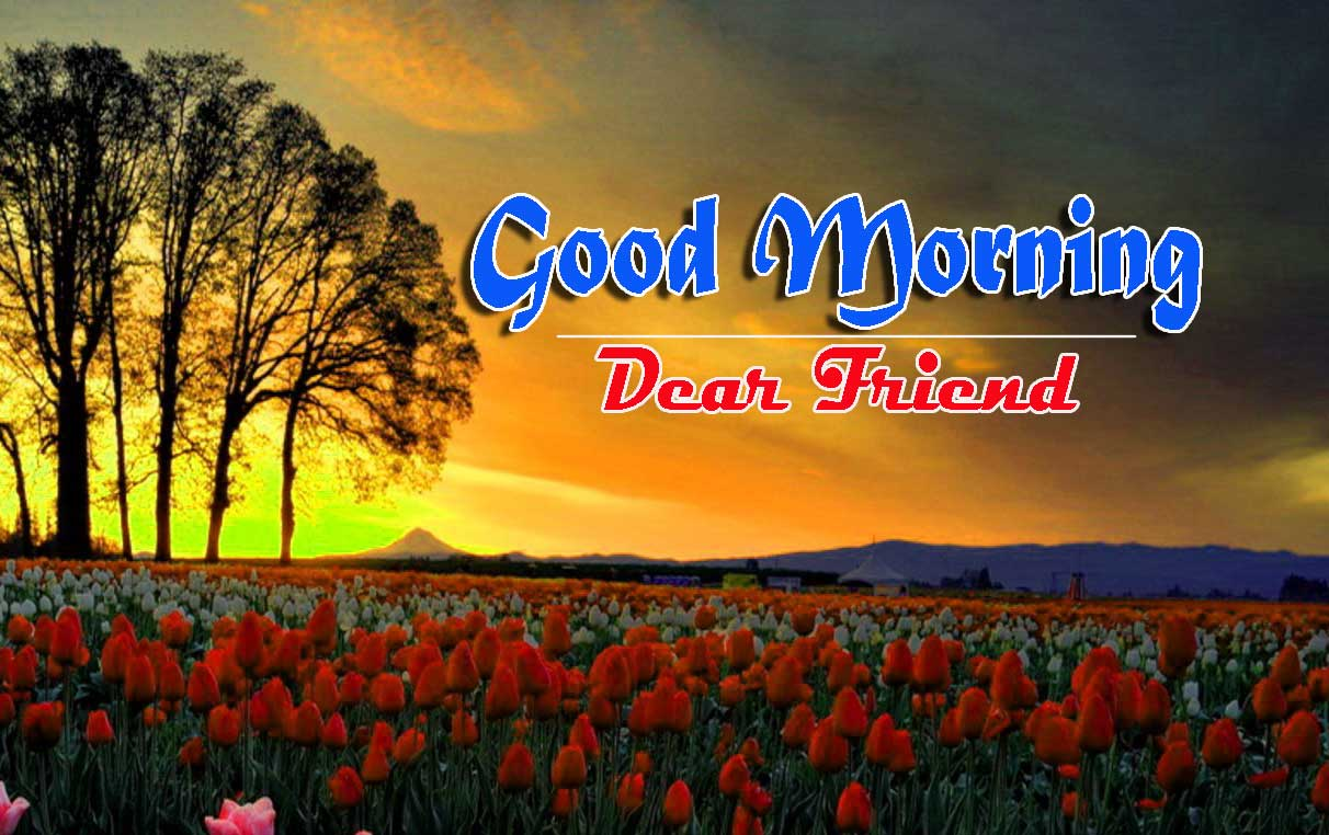 Good Morning Images HD 64