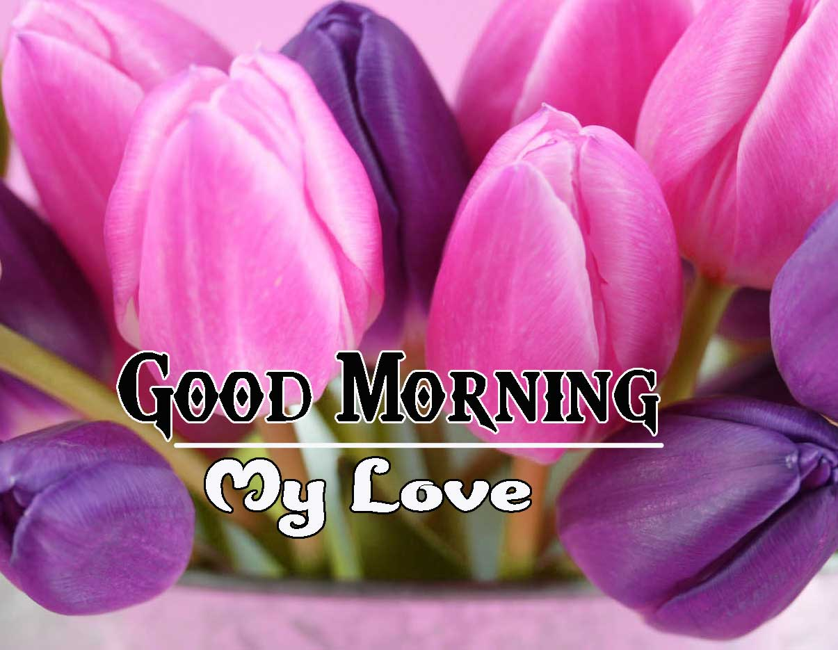Good Morning Images HD 67