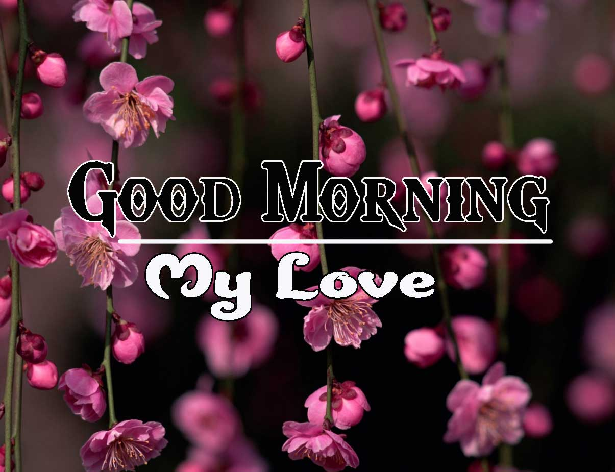 Good Morning Images HD 68
