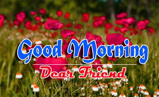 Good Morning Images HD 7