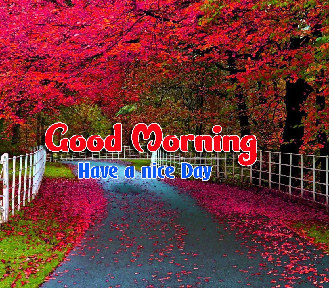 Good Morning Images HD 73