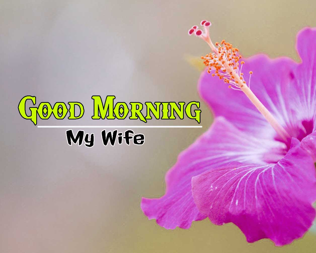 Good Morning Images HD 75
