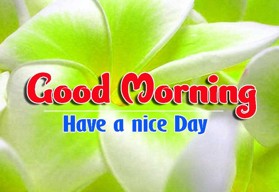 Good Morning Images HD 8