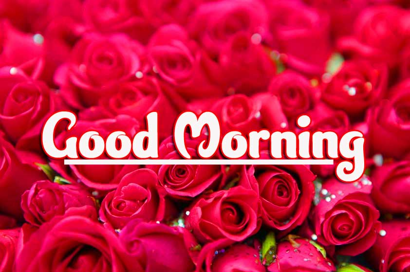 Good Morning Photo Pics photo Download Latest