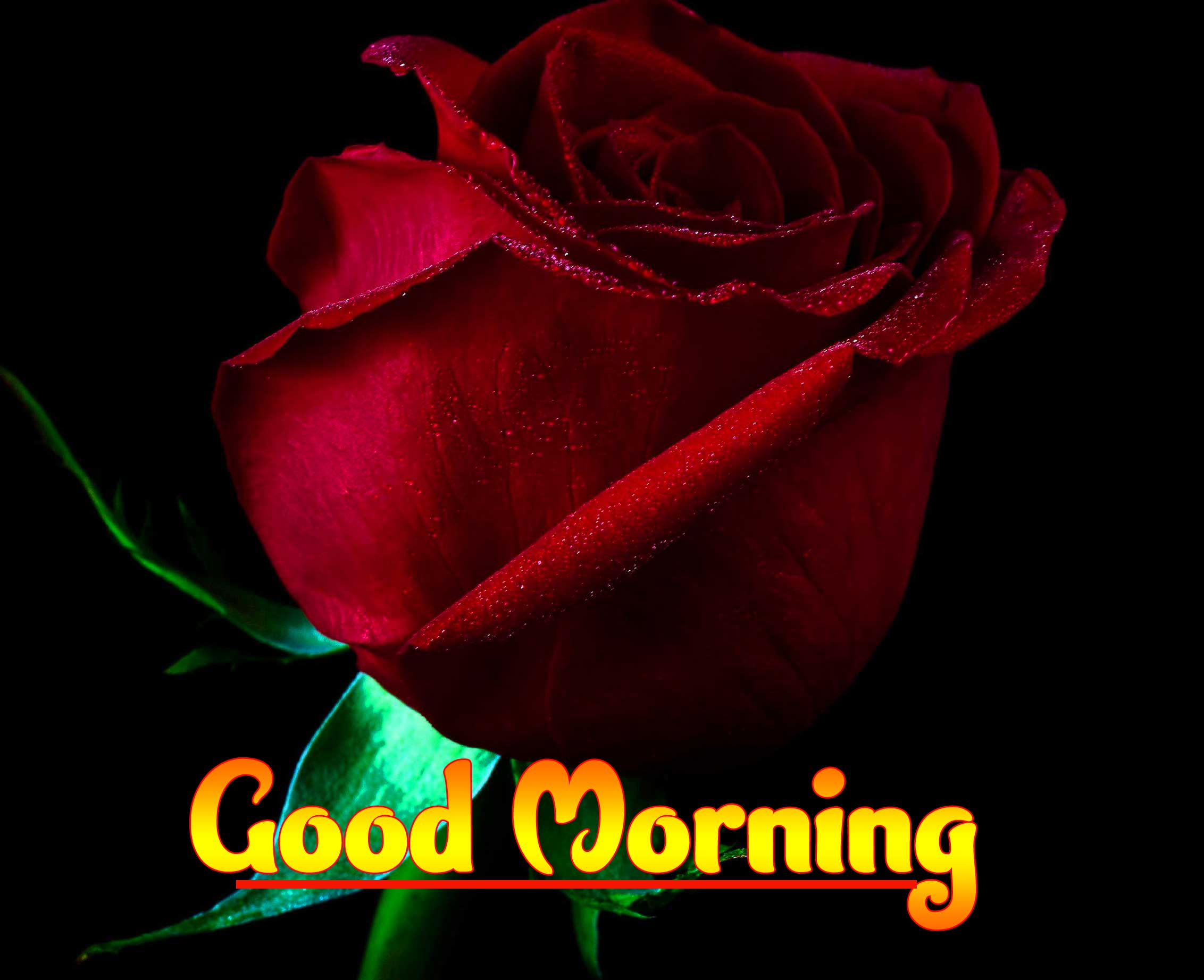 Good Morning Photo Wallpaper for Facebook