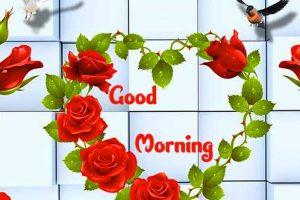 Good Morning Photo Free Download 98