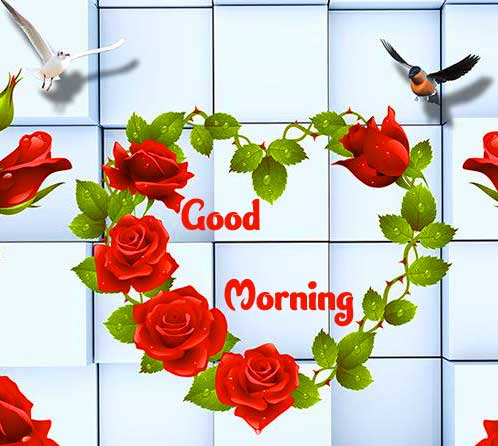 Good Morning Photo Wallpaper Pics Full HD