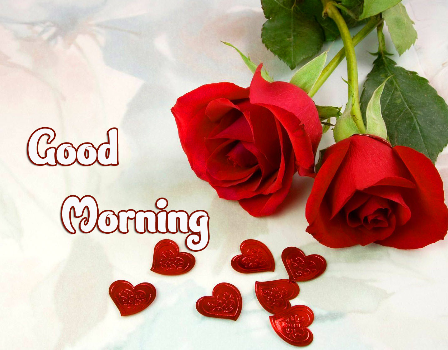 Good Morning Images Pics photo Download Free