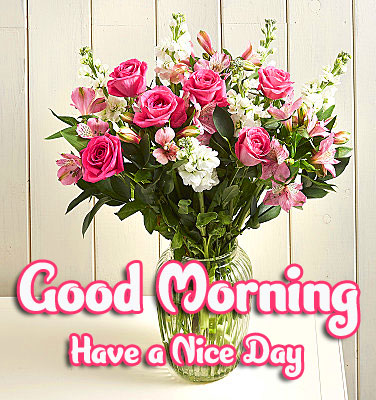 Flower Free Good Morning Images Pics Download