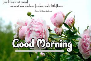 Good Morning Pics Download 91
