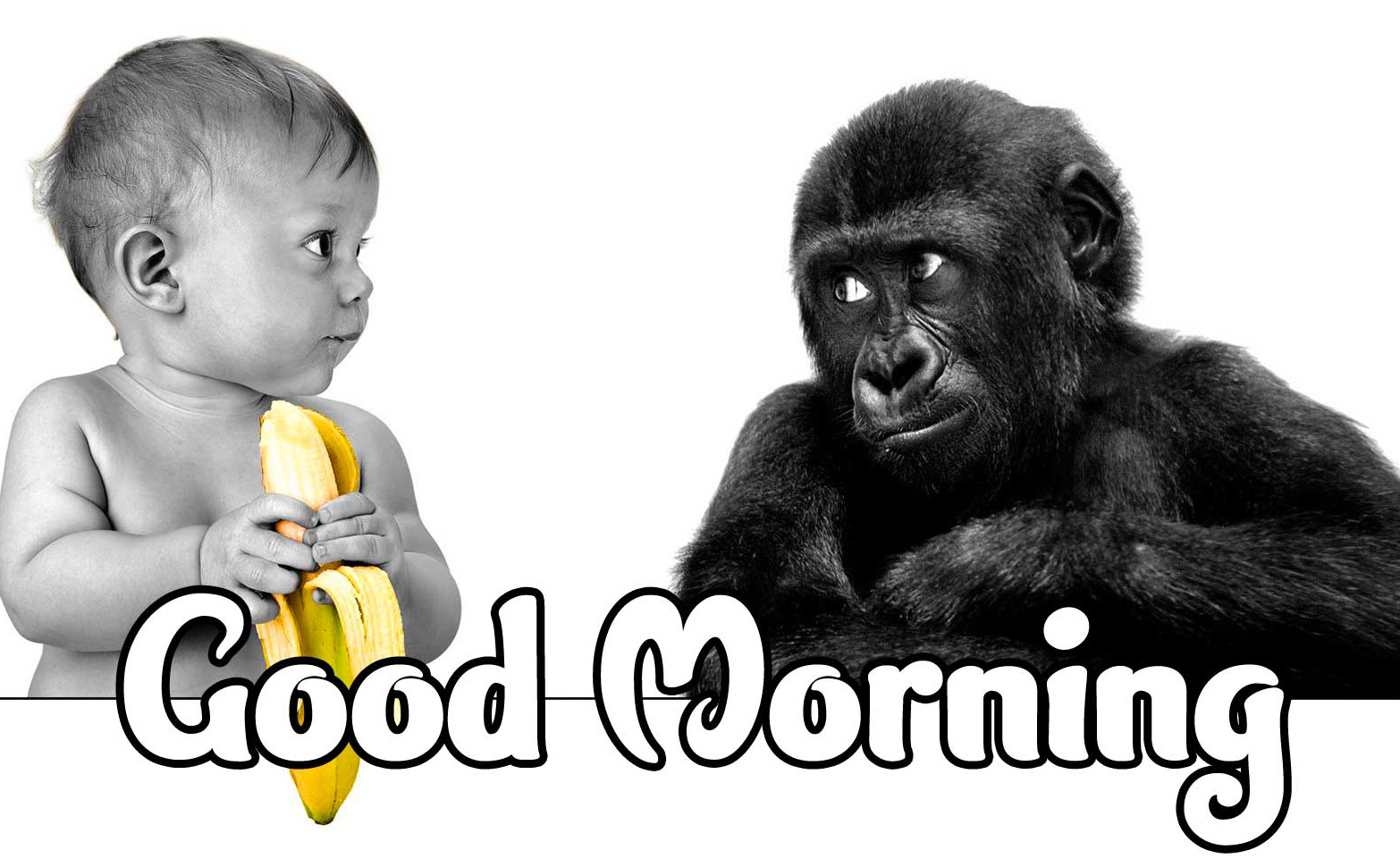 Good Morning Small Baby Images Wallpaper for Whatsapp