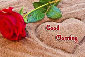 258+ Good Morning Wallpaper Download – Always Updates