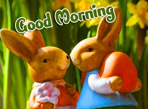Good Morning Wallpaper Pics pictures Download