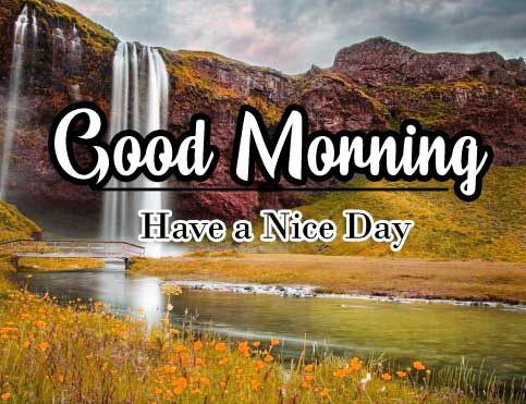 Good Morning Wishes Wallpaper Pictures Download