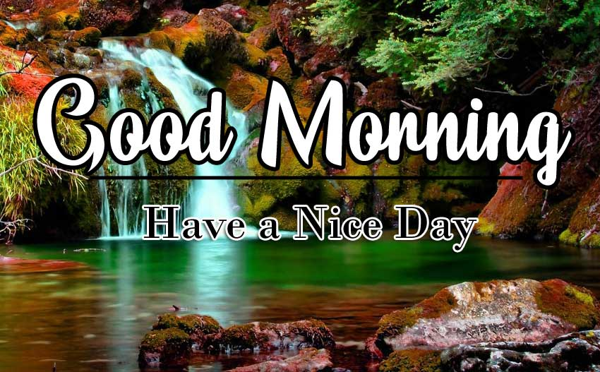 Best Good Morning Wishes Wallpaper Pics Download