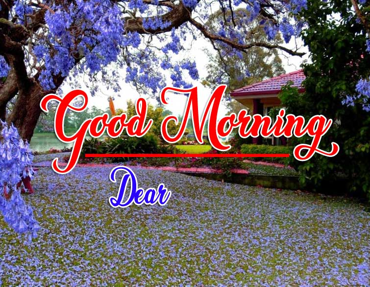 Good Morning Wishes Wallpaper Pics Download