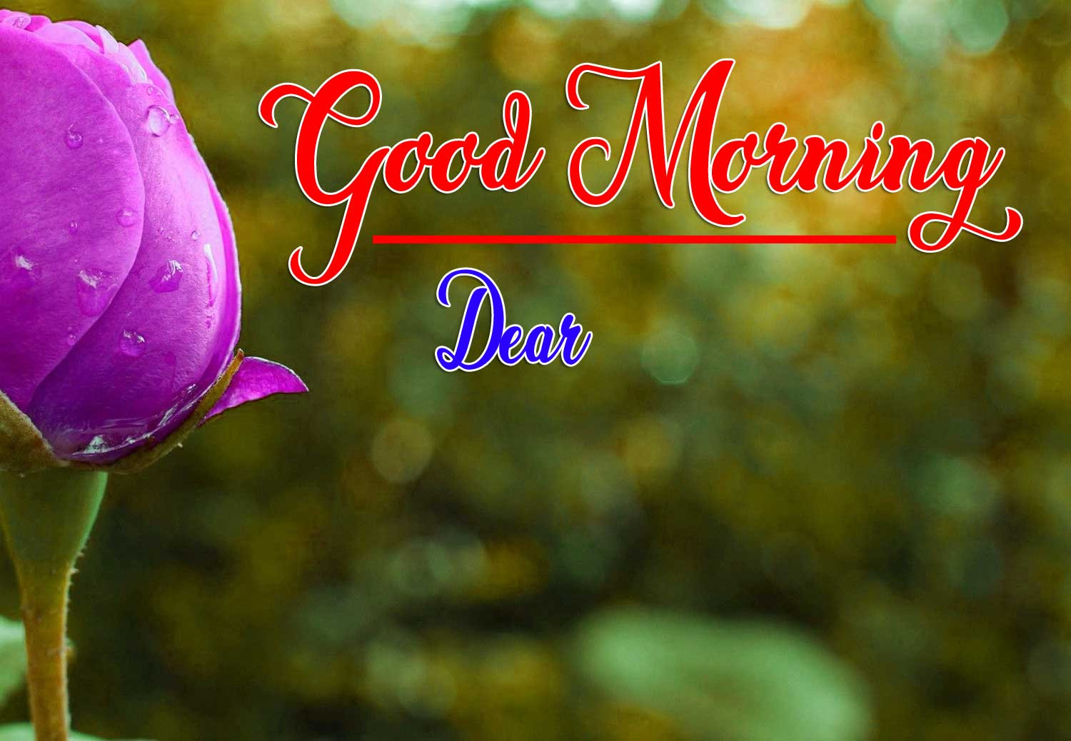 Good Morning Wishes Wallpaper Pics Download for Whatsapp