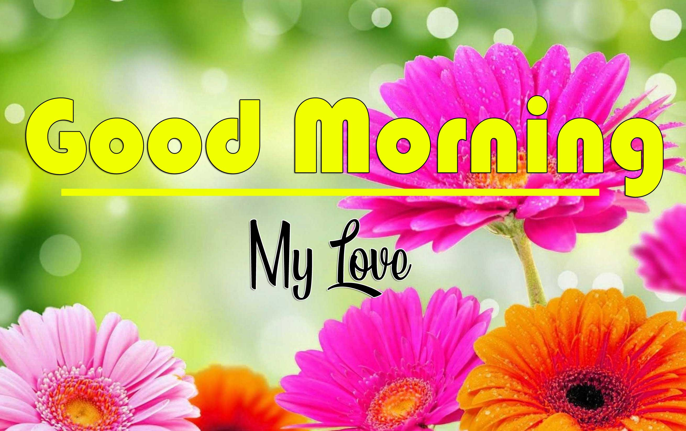 Latest Free Good Morning Wishes Wallpaper Pics Download