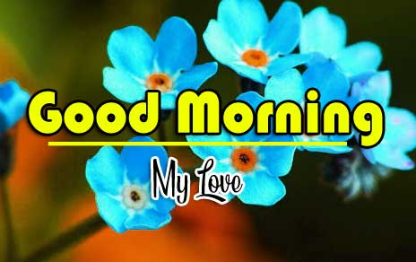 Best Free Good Morning Wishes Pics Wallpaper Download