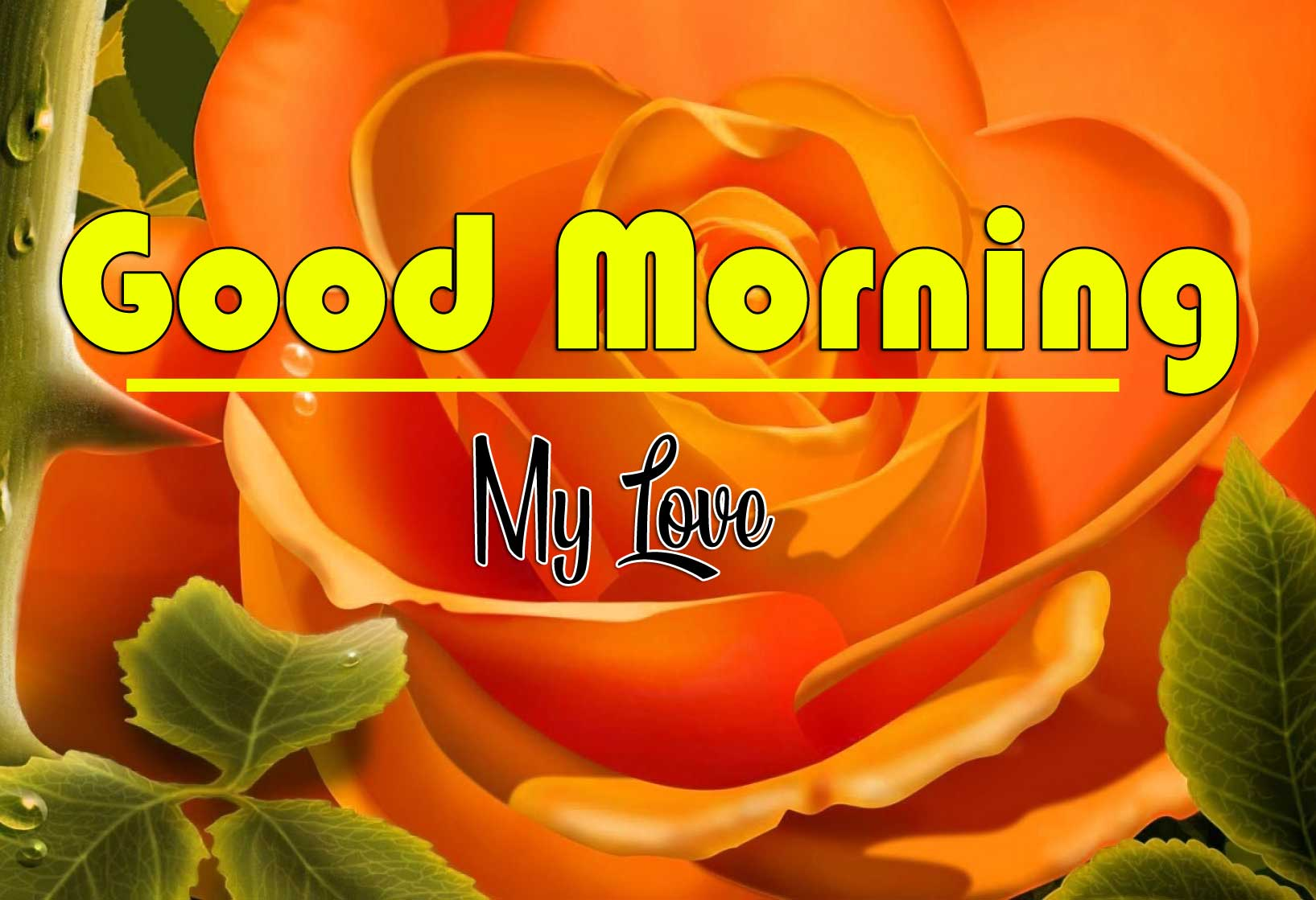 Sweet Good Morning Wishes Wallpaper Pics Download