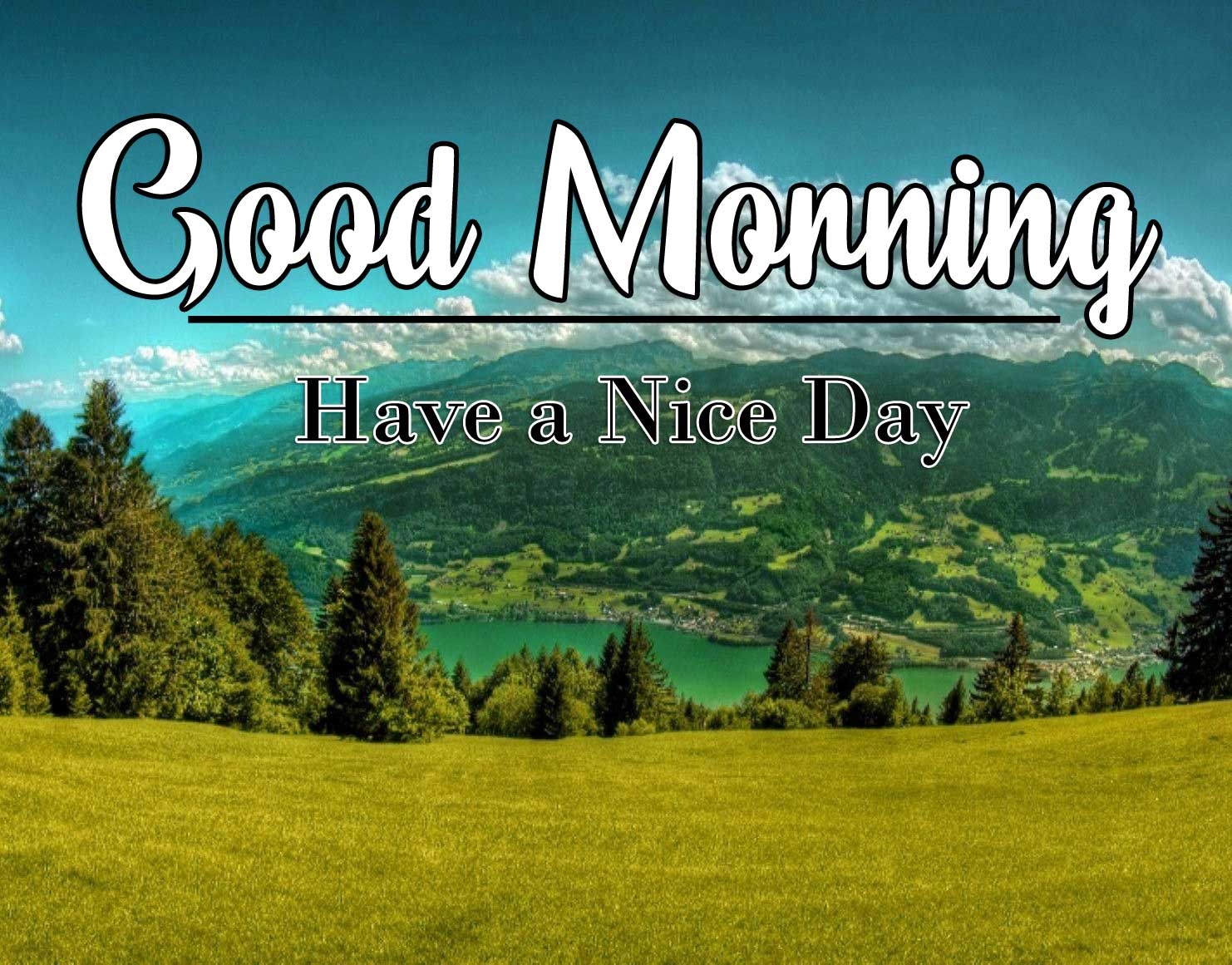 Good Morning Wishes Pics Pictures Dp