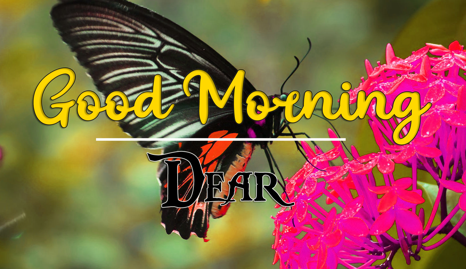 Good Morning Wishes Images HD 1080p 15