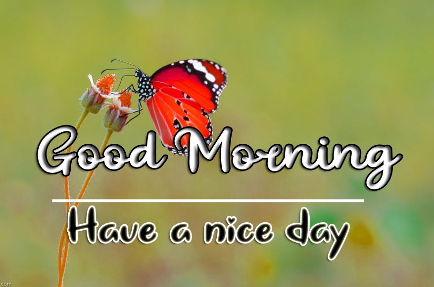 Good Morning Wishes Images HD 1080p 2