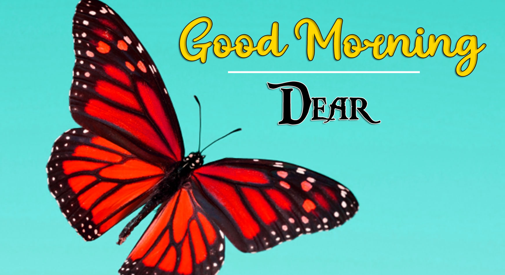 Good Morning Wishes Images HD 1080p 23