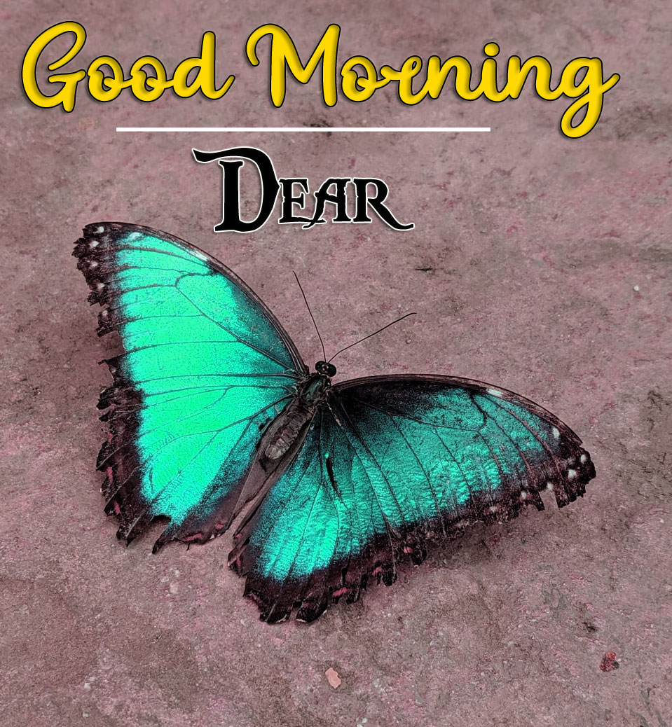 Good Morning Wishes Images HD 1080p 4
