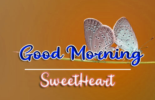 Good Morning Wishes Images HD 1080p 6
