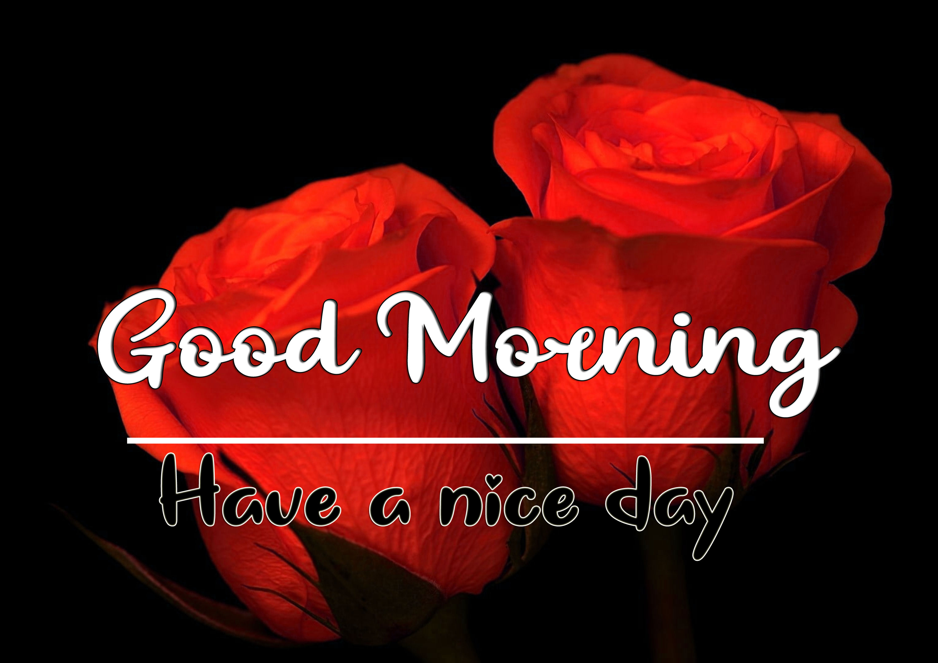 Good Morning Wishes Images HD 1080p 9