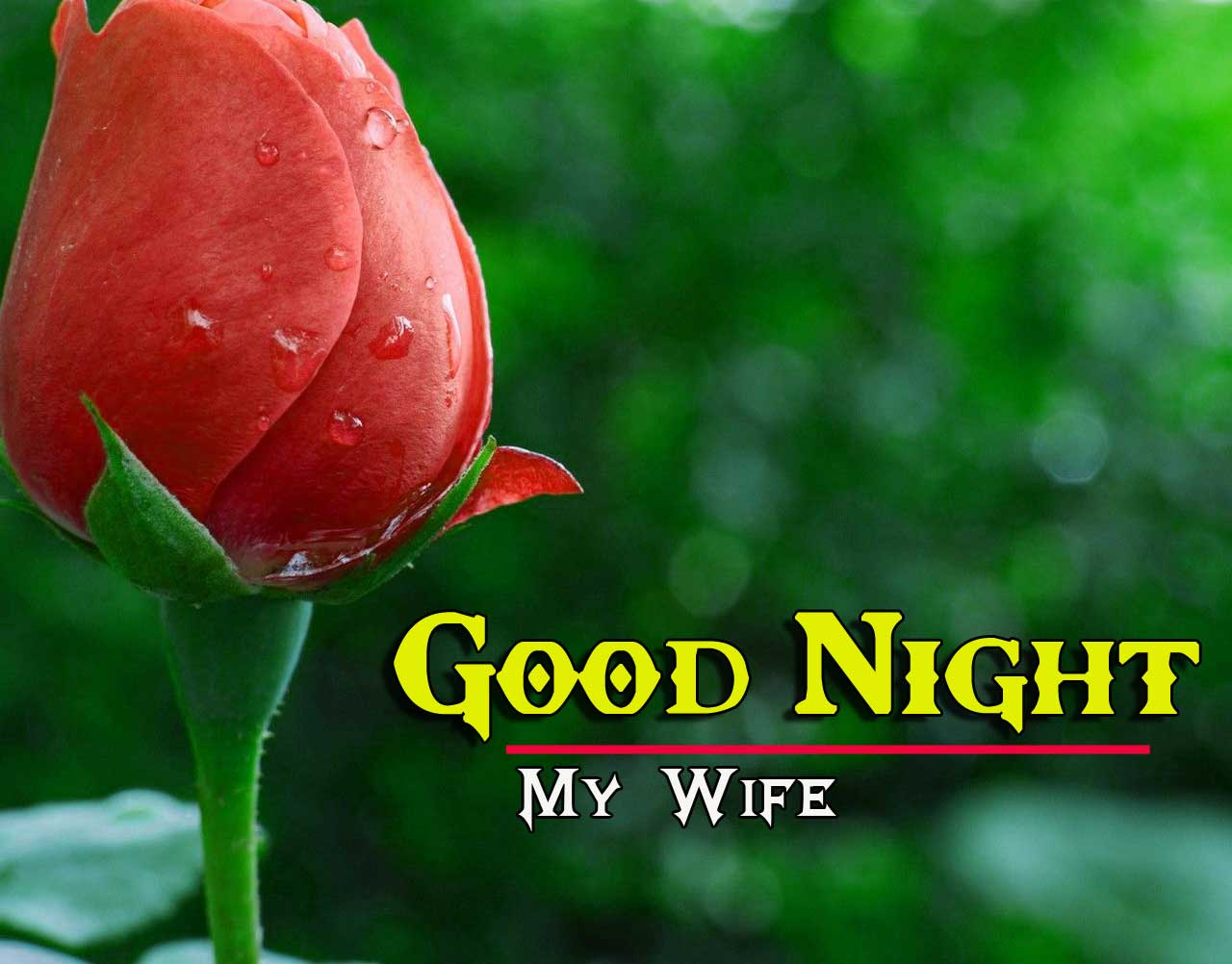 Good Night Images 4k 1080p photo Dow load With Rose