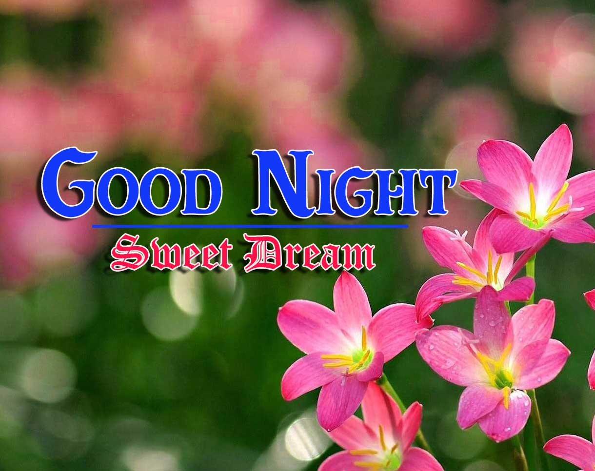 Good Night Images 4k 1080p Images Pics With Flower