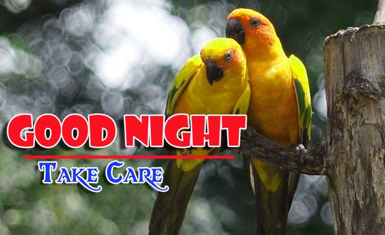 Good Night Images 4k 1080p Photo Wallpaper for Lover