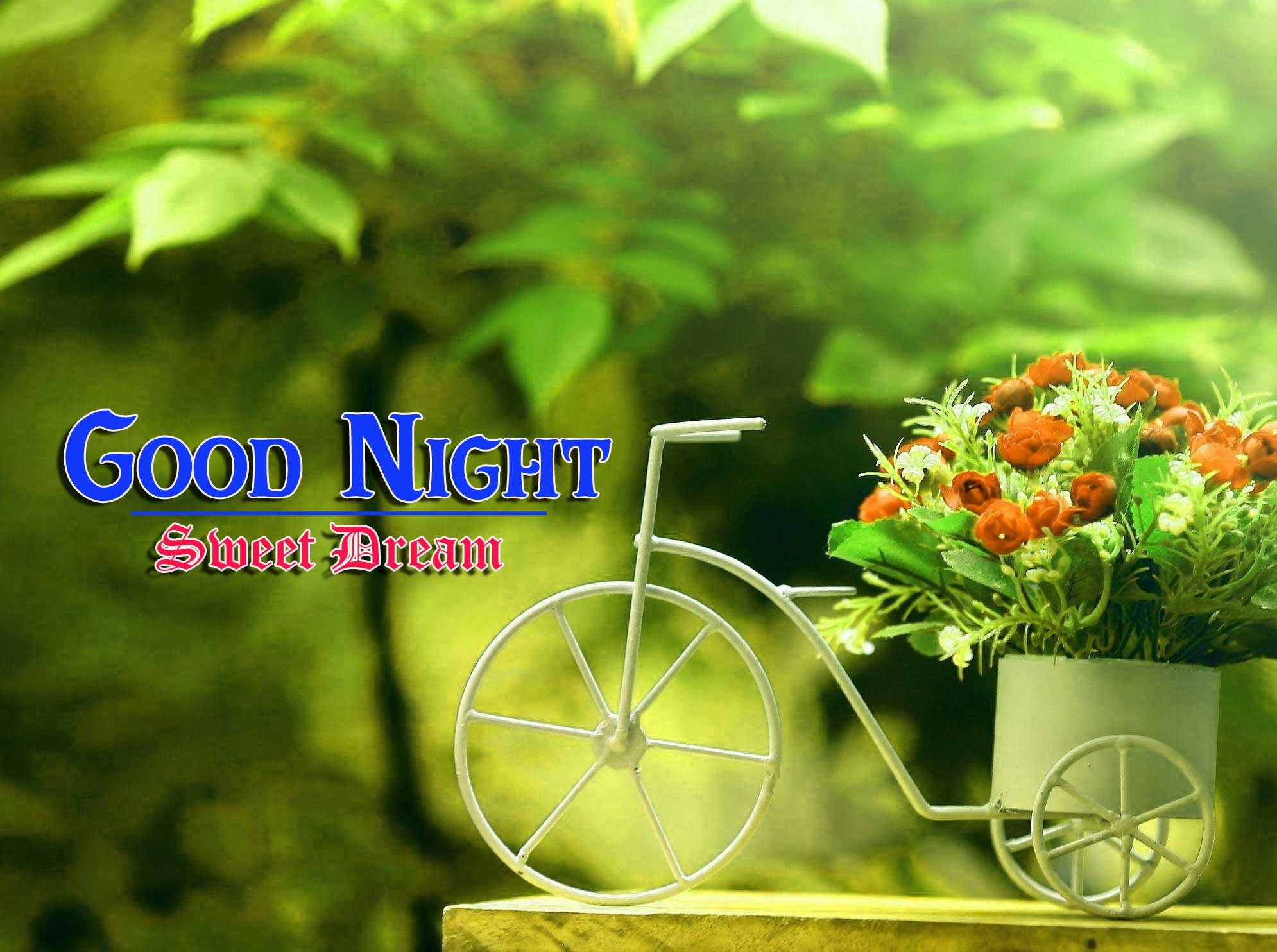 Beautiful Free Good Night Images 4k 1080p Wallpaper Free Download