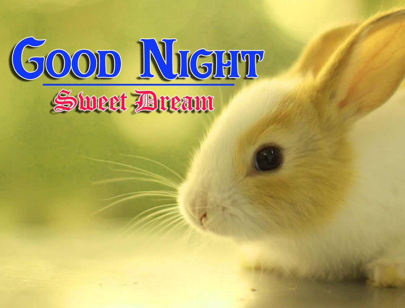 Beautiful Free Good Night Images 4k 1080p Wallpaper for Whatsapp