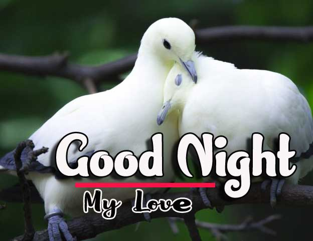 Good Night Wishes Images Pics Free Download