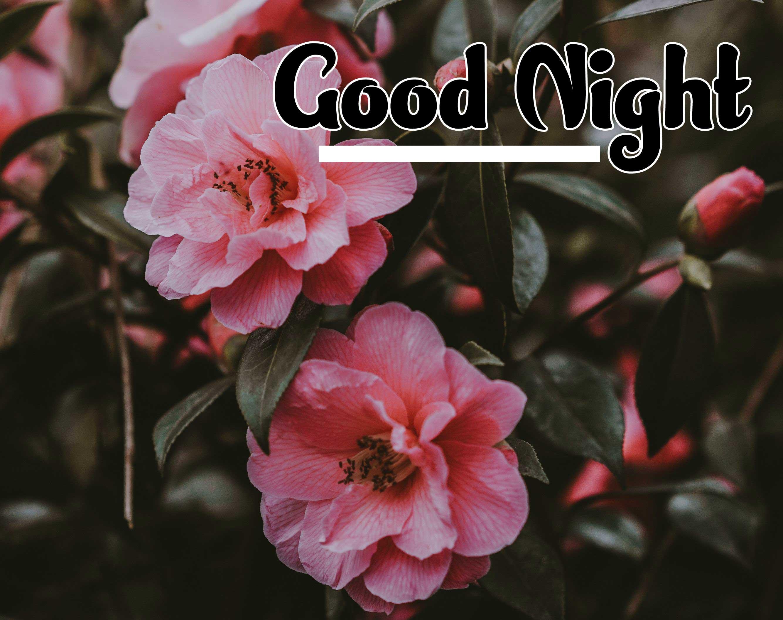 Cute Babies Good Night ImagesPics photo for Whatsapp